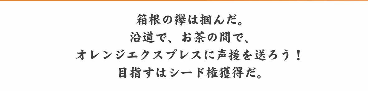 93th_Hakone_tasuki.jpg
